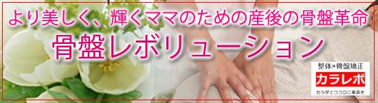 骨盤レボリューション(より美しく、輝くママのための産後の骨盤革命)